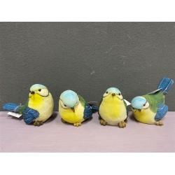 ***Blue & yellow birds (L)