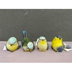 *Blue & yellow birds (S)